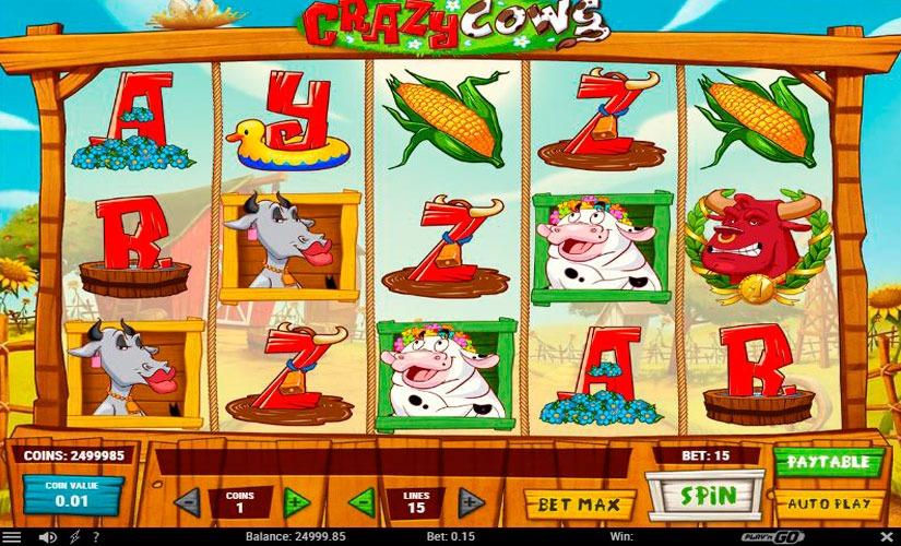 Crazy Cows -86038