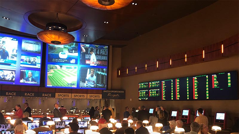 NFL Betting -819441