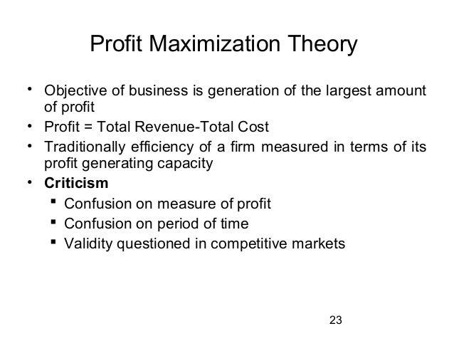 Profit Maximizer Theory -755009