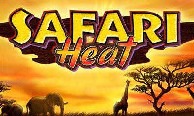 Safari Heat -740060