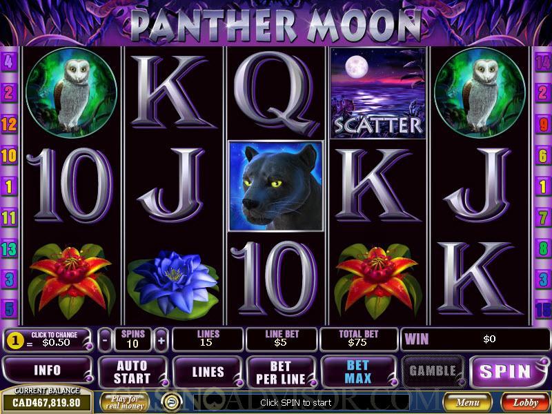 Panther Moon Slot -374890