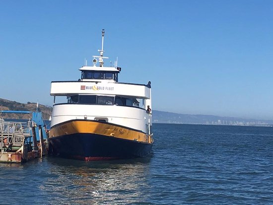 Line Ferry Casino -730011