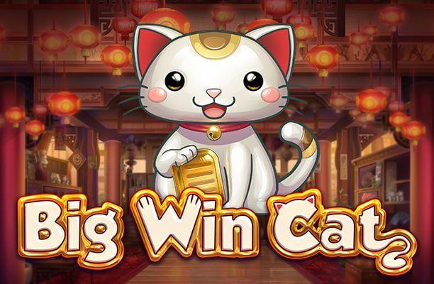 Big Win Cat -910205