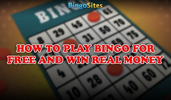Bingo Online for -347014