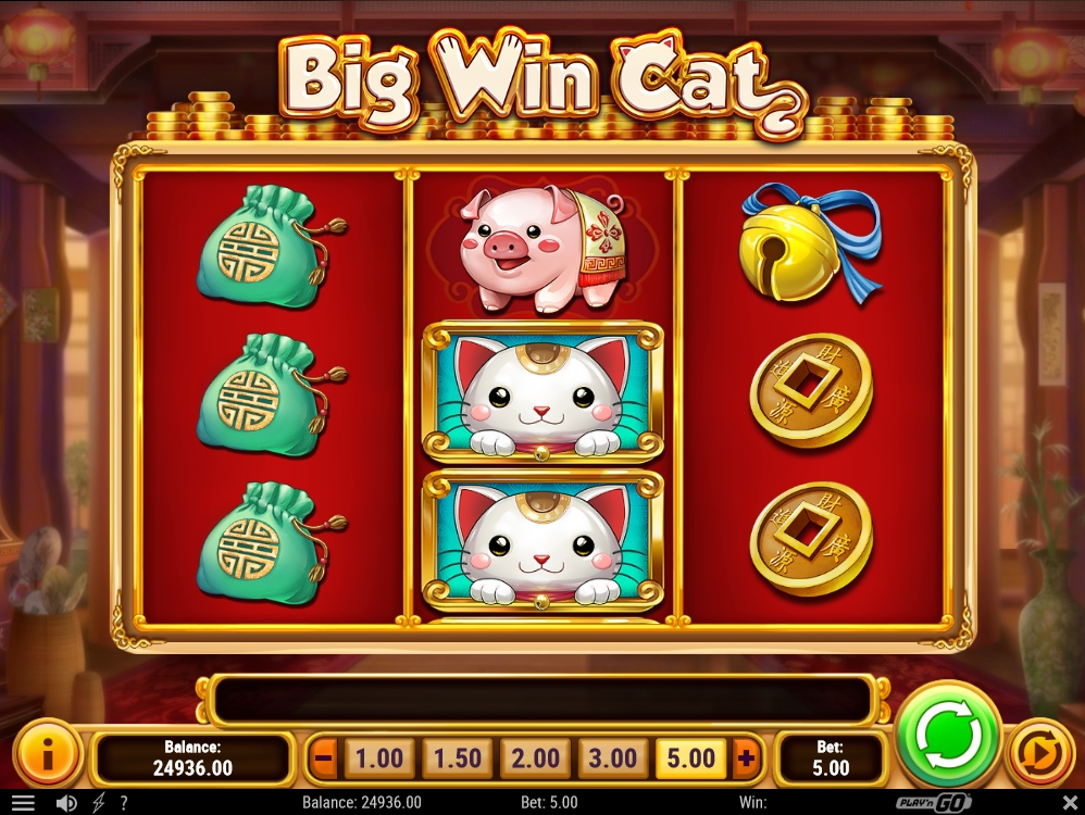 Big Win Cat -26160