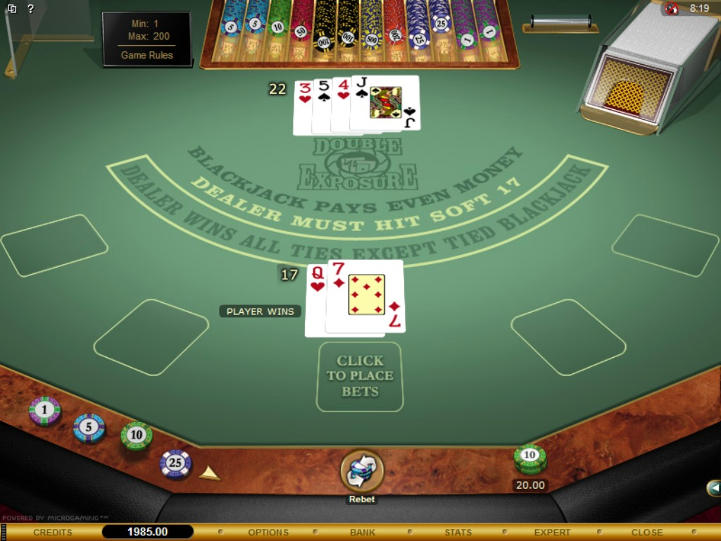 Double Exposure Blackjack -256832