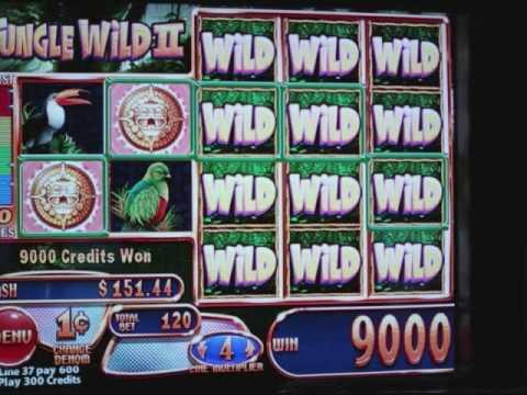 Most Big Wins -103236
