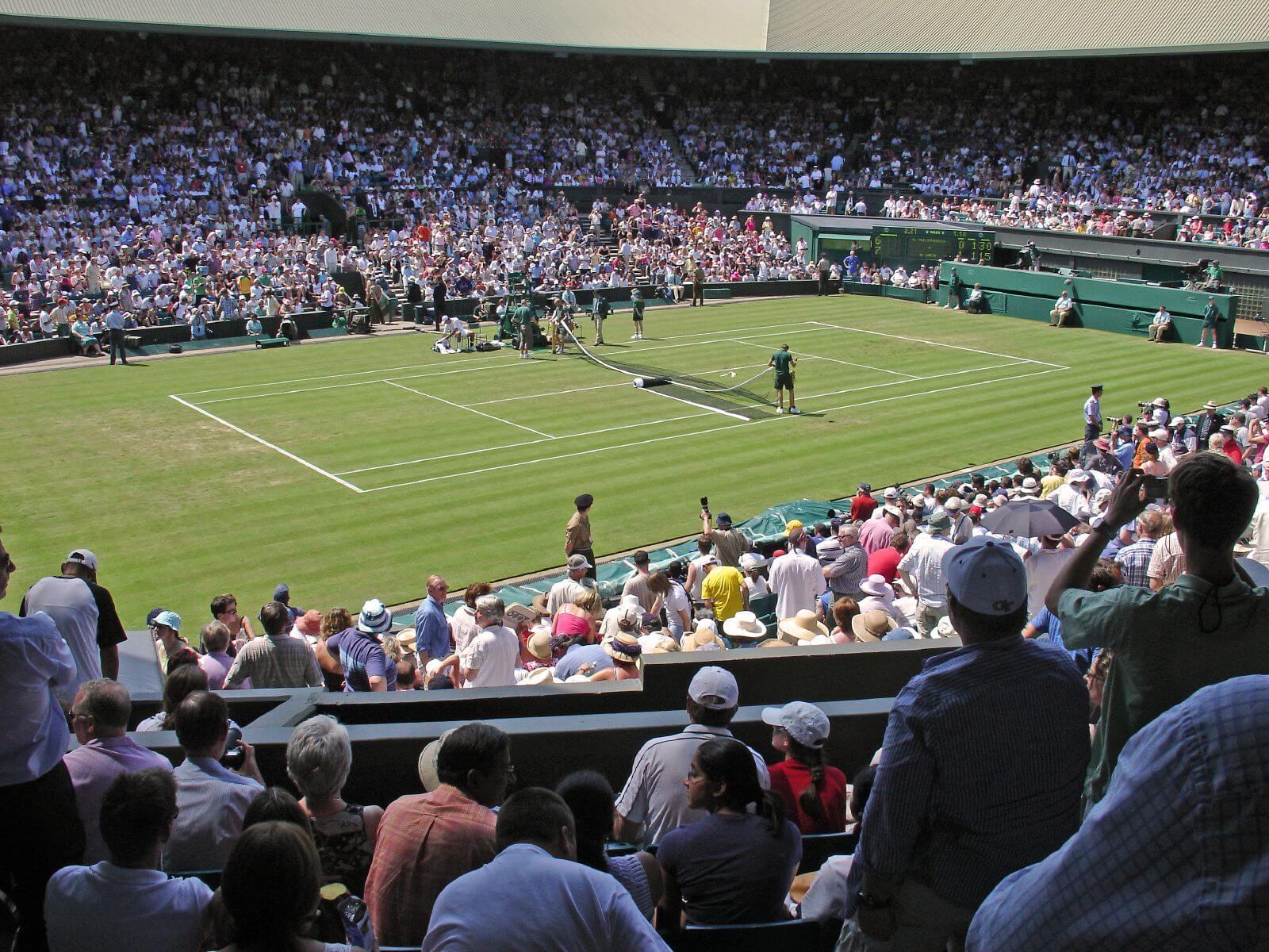 Wimbledon Betting Odds -482422